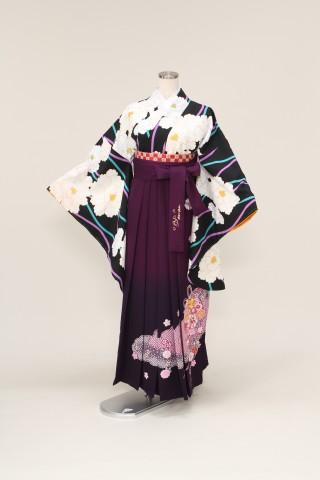 No.2362 着物/黒 袴/紫