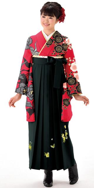 No.6429 【卒業時装】着物929A1赤黒/鶴・梅&女袴374_250黒/桜蝶ししゅう