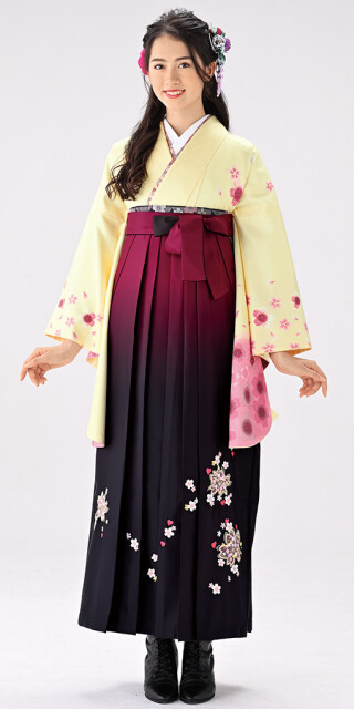 No.6442 【卒業時装】着物767A1クリーム/舞桜&女袴398_240ワイン・黒/ボカシししゅう