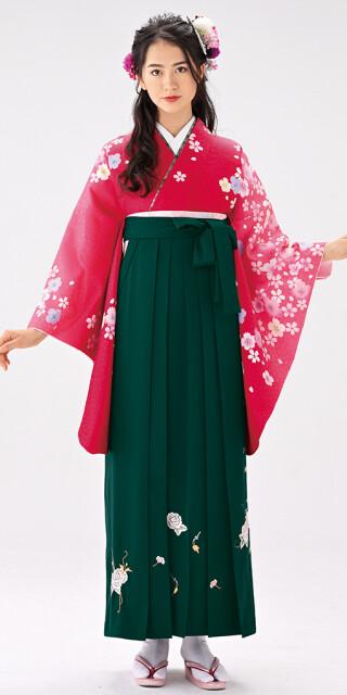 No.6461 【卒業時装】着物750A1赤ボカシ/いろ桜&女袴372_245グリーン/つるバラししゅう