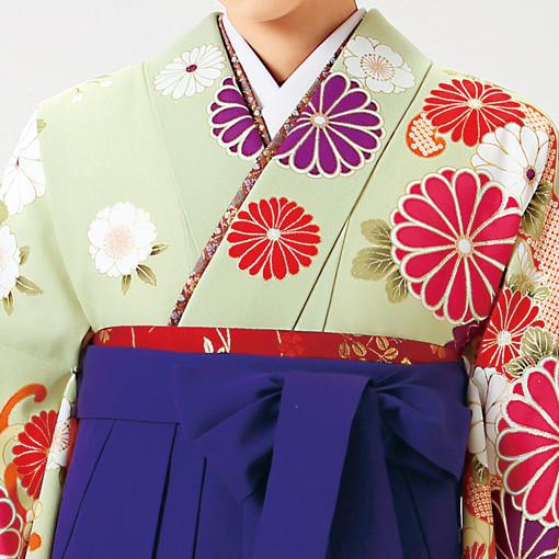 【卒業時装】着物922うぐいす/大菊*はかま375紫/桜蝶ししゅうの衣装画像2