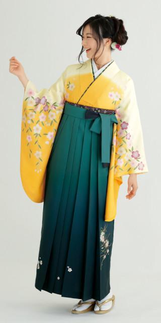 【卒業時装】着物798イエロー/ボカシ桜*はかま394グリーン/ボカシししゅう