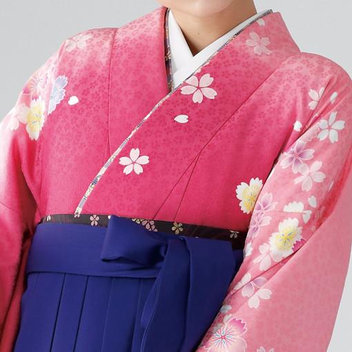 【卒業時装】着物815ピンクボカシ/いろ桜*はかま375紫/桜蝶ししゅうの衣装画像2