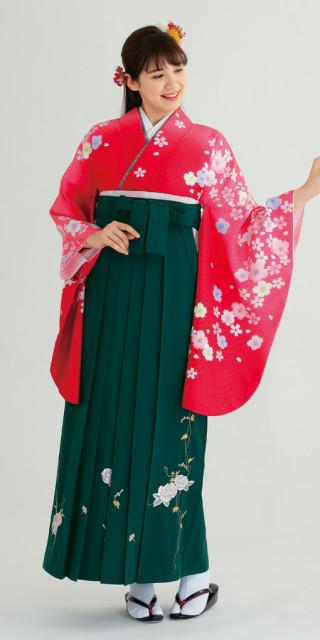 No.1564 【卒業時装】着物750赤ボカシ/いろ桜*はかま372グリーン/つるバラししゅう