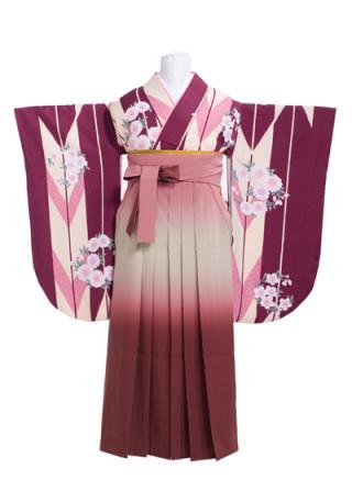 紫、大きい矢絣模様に桜