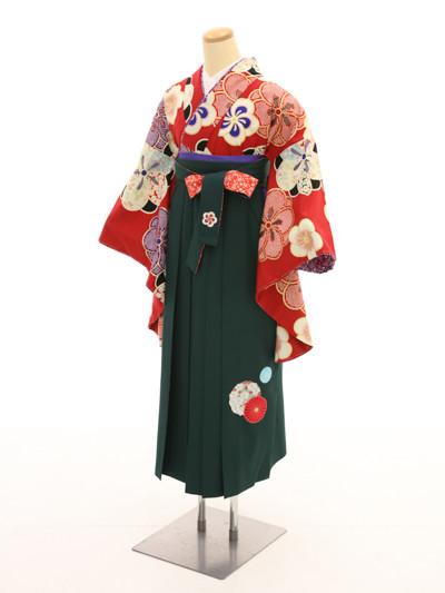 着物E702・袴D72の衣装画像1