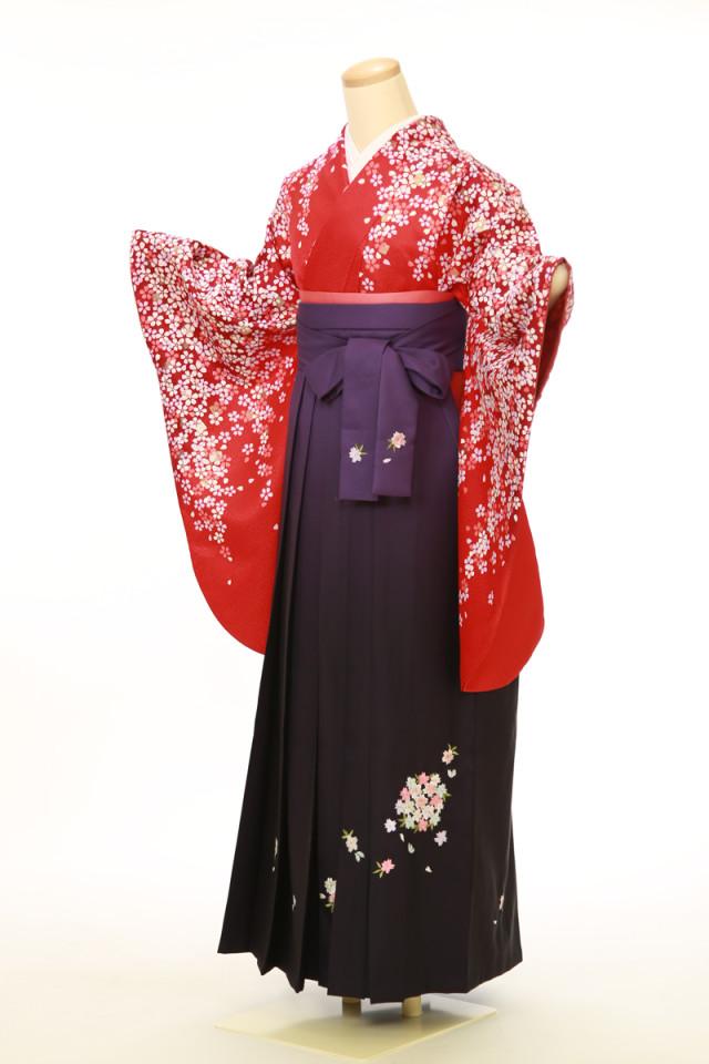 二尺袖袴用着物 袴セットの衣装画像1