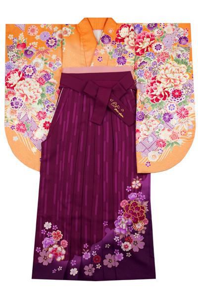 モデルまいち着用ブランド/A-104着物&A-203袴セットの衣装画像1