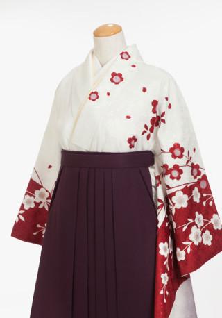 晴れの日にぴったりの紅白の梅模様