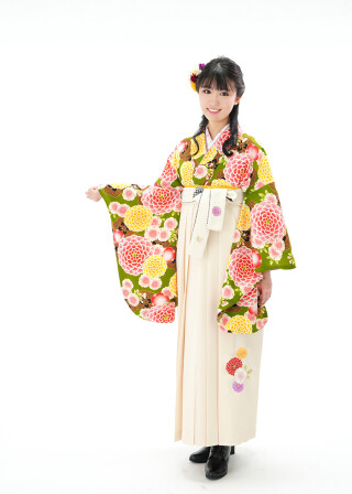 No.6089 菊に亀甲 抹茶