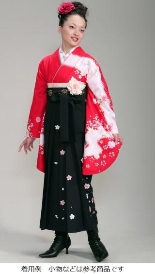 No.3823 卒業用袴セット 20000円