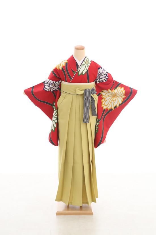 卒業袴フルセットレンタル 二尺袖×モダン柄の衣装画像2