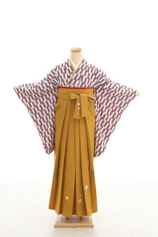 No.5084 卒業袴フルセットレンタル 二尺袖×矢絣柄