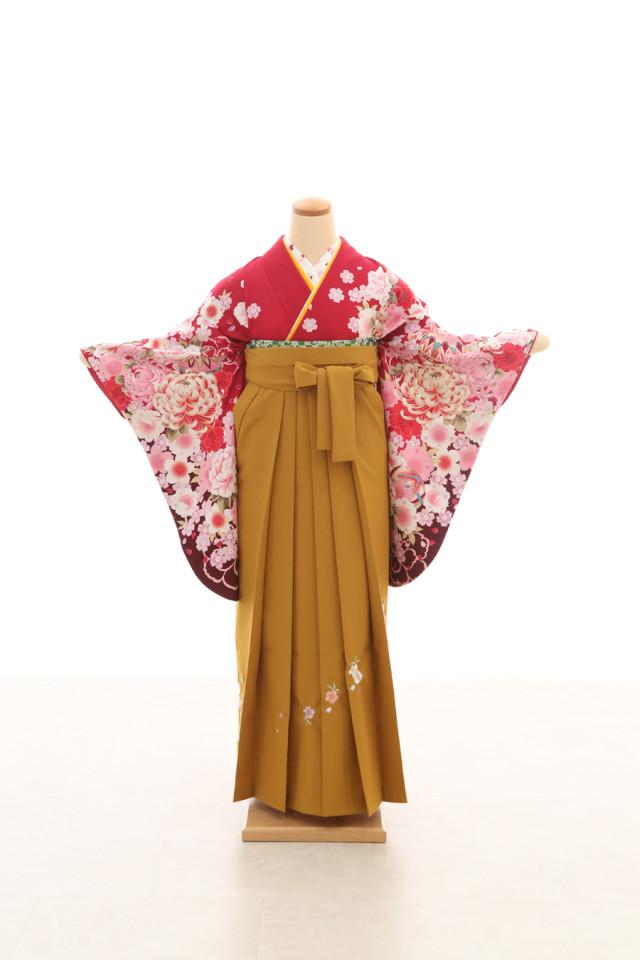卒業袴フルセットレンタルの衣装画像3